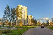 kvartry-v-zelenyj-bor-zelenograd-1482931165.0405_.jpg