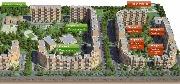 zelenaya-okolitsa-plan.jpg