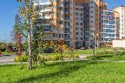 kvartry-v-zelenyj-bor-zelenograd-1482931145.8184_.jpg