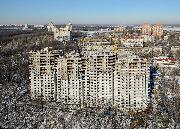 berez-voronezh-feb-4.jpg