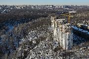 berez-voronezh-feb-2.jpg